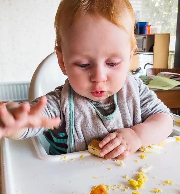 Cursus baby's eten zelf